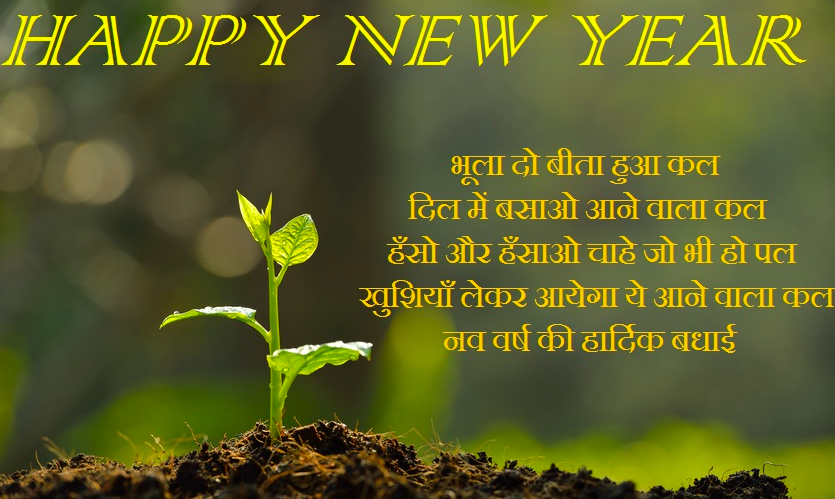 Best representation descriptions Happy New Year Shayari