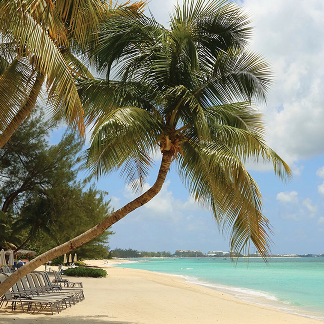 Cook Islands Beaches: Enjoy Caviar In The Surf During Seabourn's Signature Beach