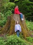 Ireland Family Vacations; Kilkenny Castle