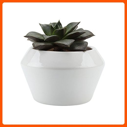 T4u 4 Inch Ceramic White Round Top Shaped Set Succulent Plant Pot Cactus Plant Pot Flower Pot Container Plante Planting Succulents Cactus Plant Pots Succulents
