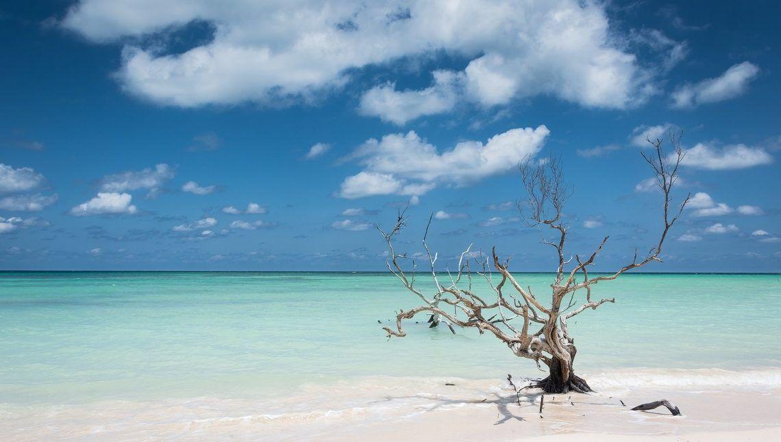 Cayo Jutias Plage De Sable Blanc Mangrove Snorkeling Visiter Cuba Visiter Cuba Plage De Sable Blanc Golfe Du Mexique