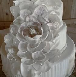 Custom And Wedding Cakes Birthday Tara S Temptations Dothan Al