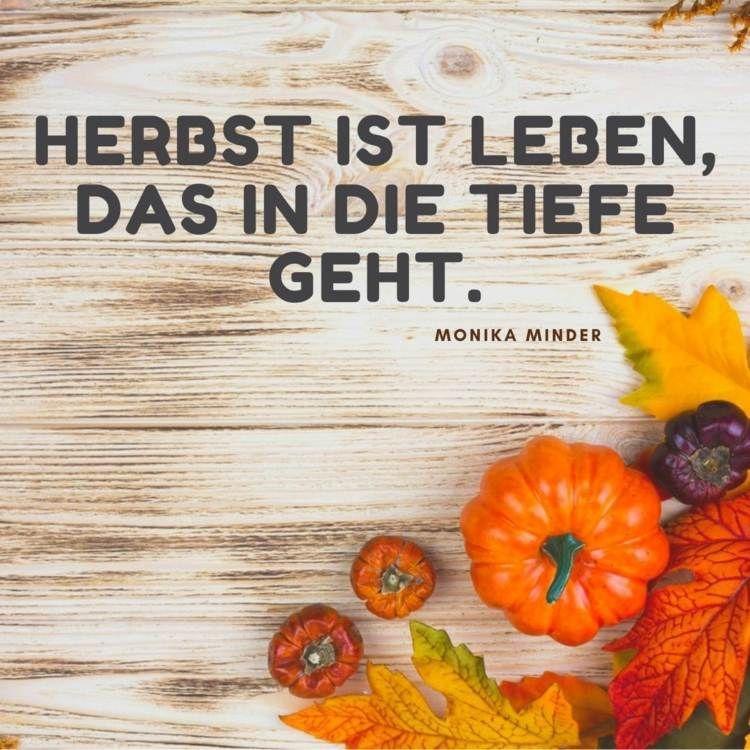 Herbst Spruche Zitate Und Gedichte Fur Einen Netten Gruss Herbst Spruch Herbst Zitate Spruche