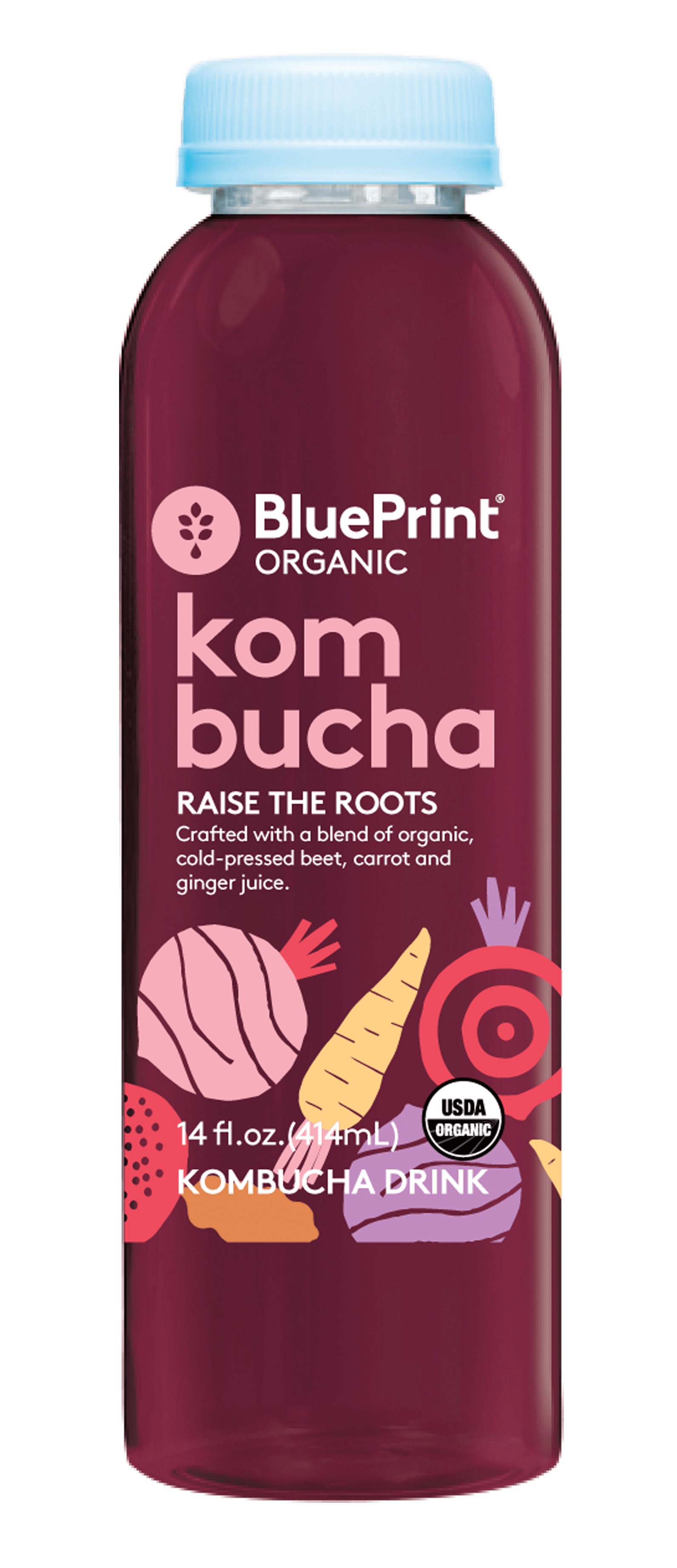 Blueprint kombucha pinterest blueprint cleanse and kombucha blueprint is committed to helping people lead authentic and more energy filled lives is what drives us every day malvernweather Image collections