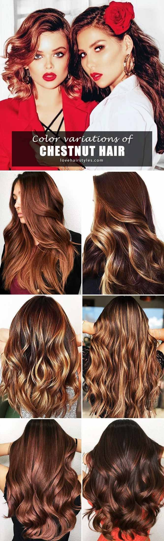 Hair Color 2017/ 2018 - ️ Want to find some chestnut hair ...