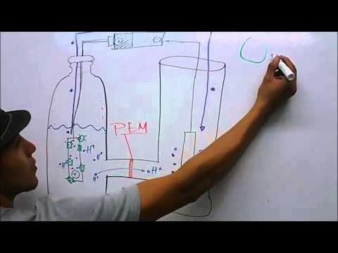 Celda de combustible microbiana (MFC) - Video explicativo