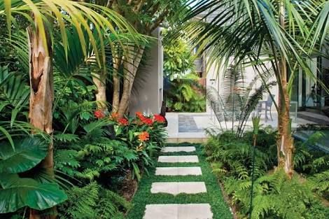 image result for tropical garden auckland jardin pinterest mon jardin et jardins. Black Bedroom Furniture Sets. Home Design Ideas