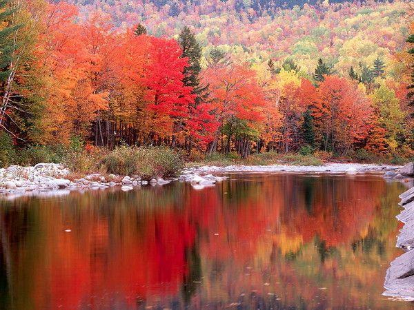 foto de fond d'écran automne | Paysage automne, Fond ecran automne