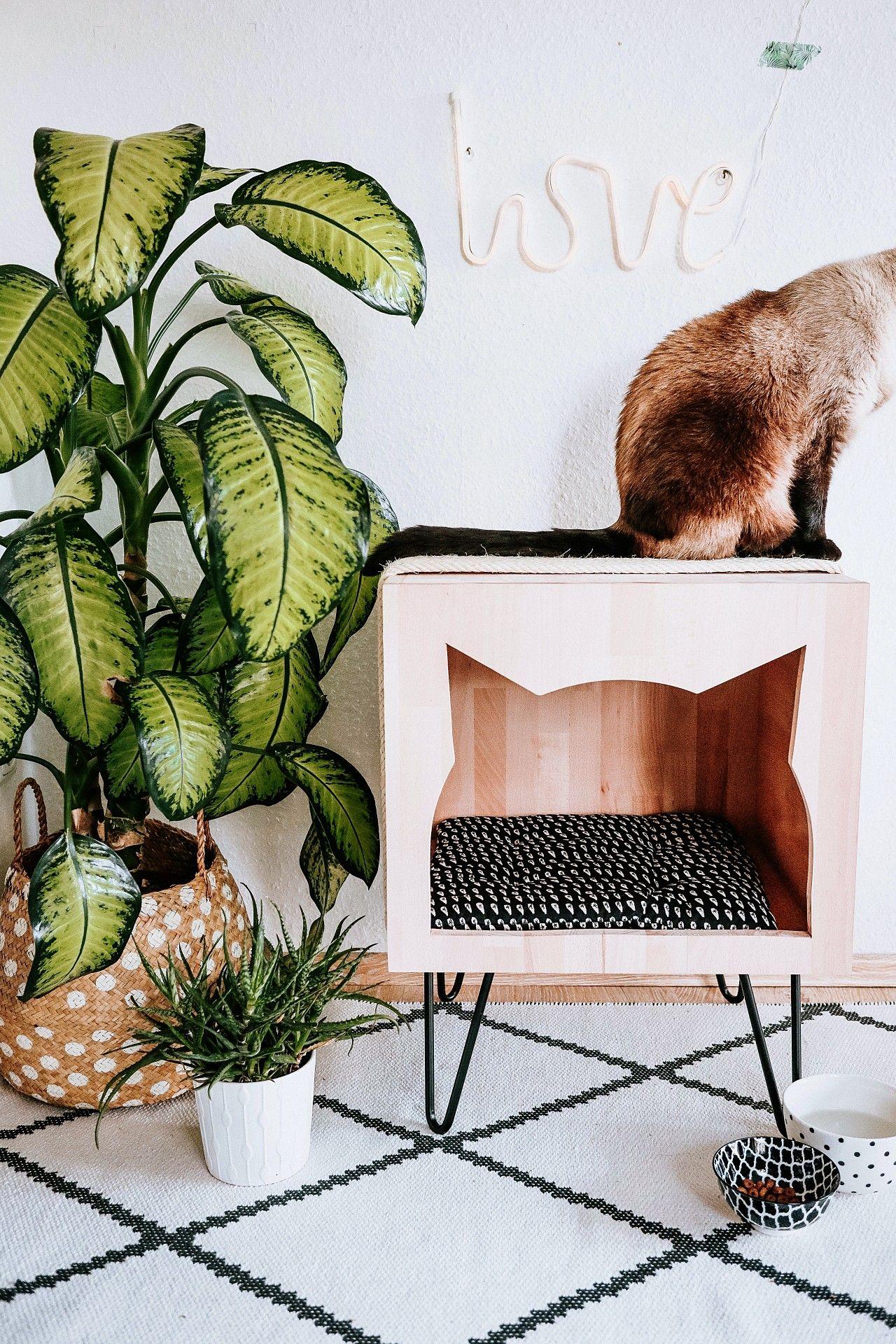 DIY-Anleitung zum Katzenkratzmöbel mit Höhle selber bauen