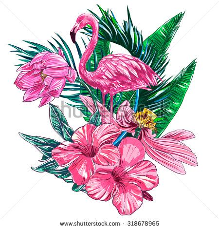 Flamingo Flower Stock Photos Images Pictures Flamingo Art Mermaid Wallpapers Flamingo Flower
