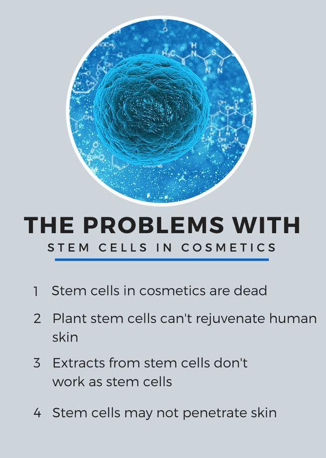Do Stem Cells In Cosmetics Really Work Stem Cells Medical Skin Care Cosmeceutical Skin Care