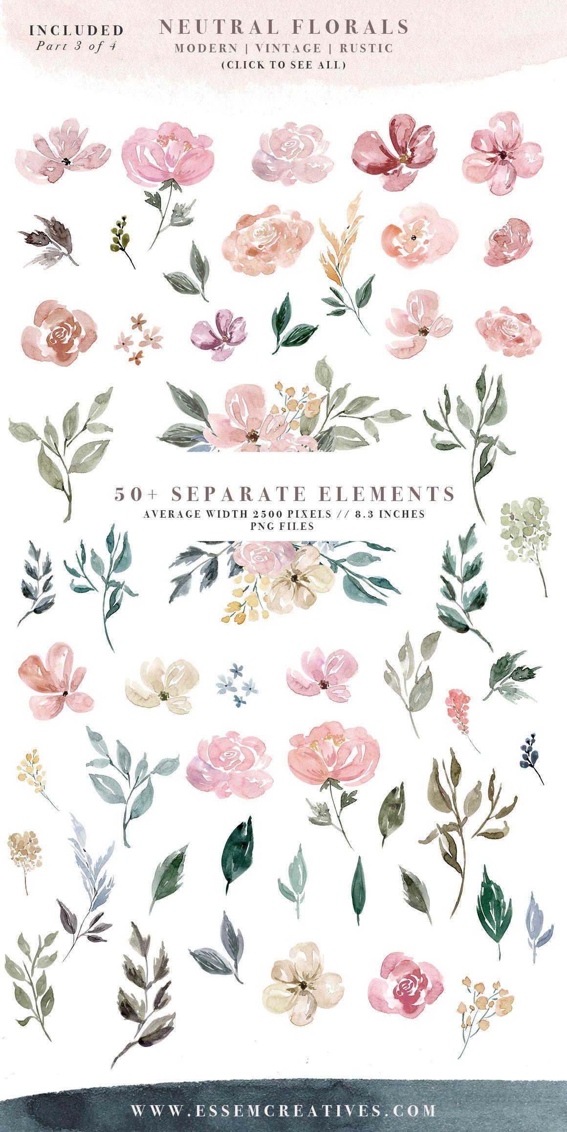 Neutral Watercolor Flowers Clipart Floral Borders