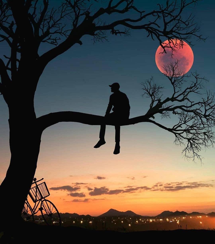 What A Wonderful Shot Moon Photography Sky Art Night Sky Wallpaper