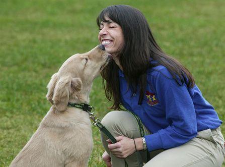 Boarding Best Friends Pet Care Walt Disney World Resort Best