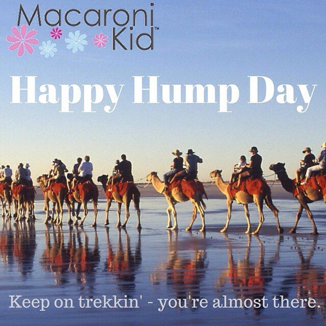 Happy Hump Day! #Mackid #Wednesday #humpday #halfwaytotheweekend