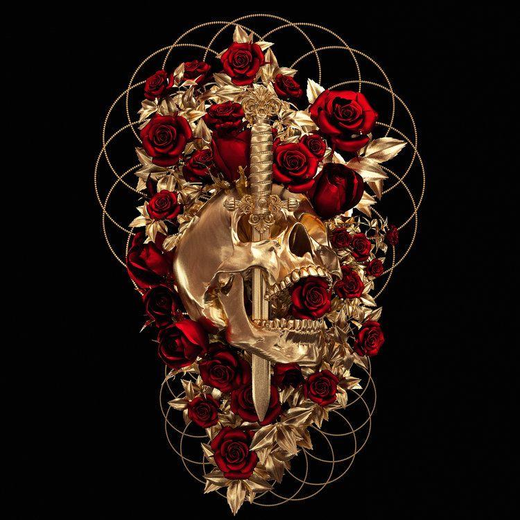 † Cranium Rosa † — Billelis