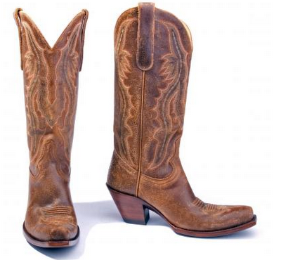 Taylor Swift Cowgirl Boots
