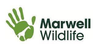 Zoo News Digest: Marwell Wildlife Mammal Nutrition Seminar