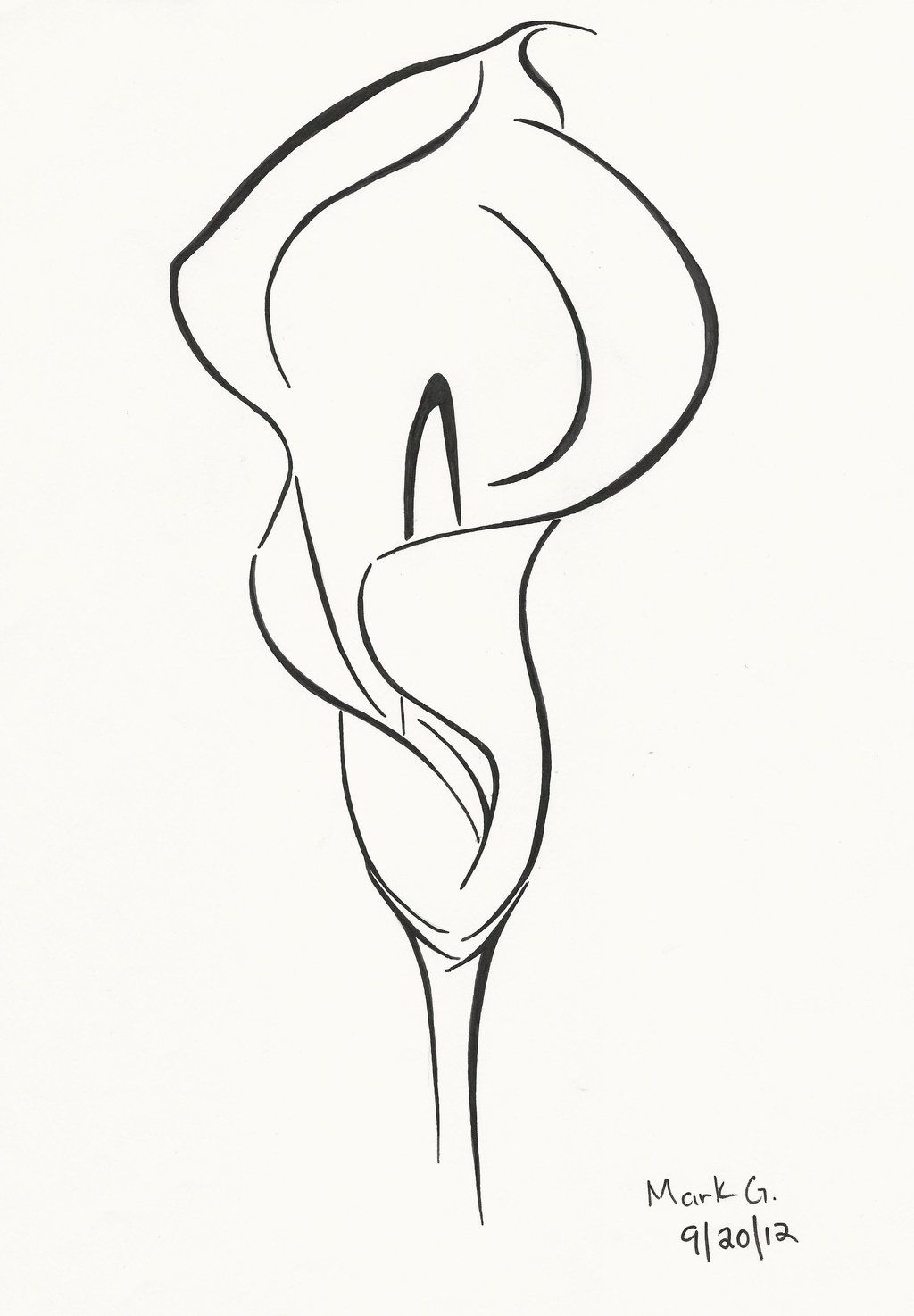 Image Result For Line Drawing Of Calla Lily Tattoos Pinterest