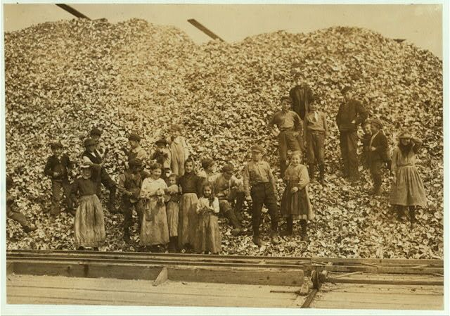 Young Oyster Shuckers In Mississippi 1911 Photographer Lewis