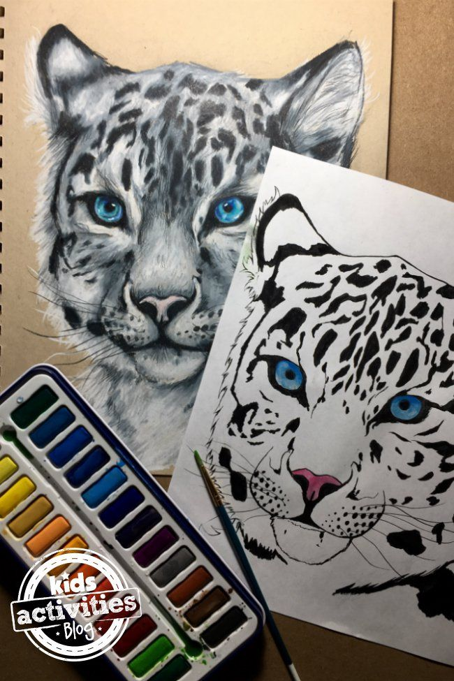 Snow Leopard Coloring Pages For Kids And Adults Leopard Craft Coloring Pages For Kids Snow Leopard