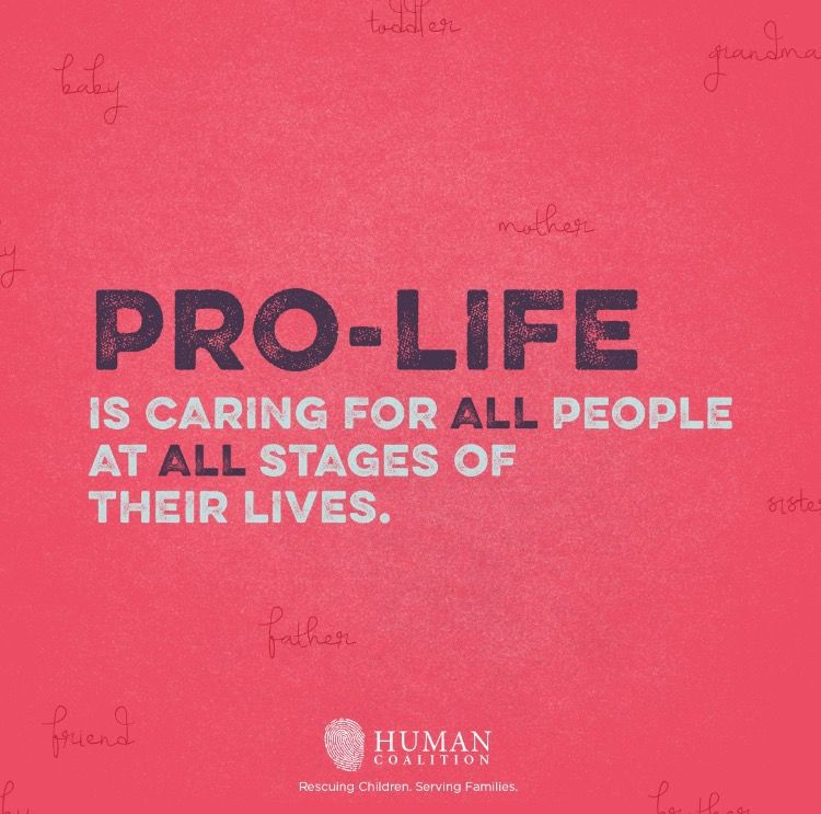 Sanctity Of Life Bible Quotes: #prolife #chooselife #wombtotomb