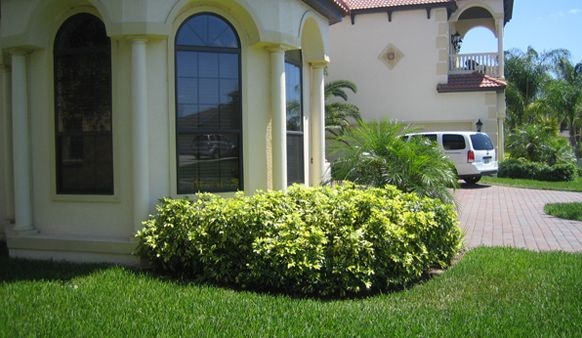 Central Florida Landscaping Ideas Landscaping Ideas Central