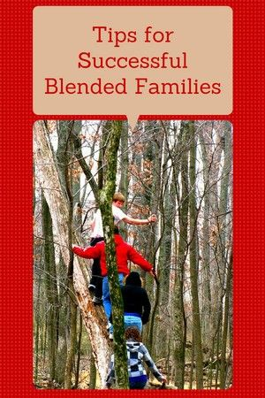 Creating successfully blended families
