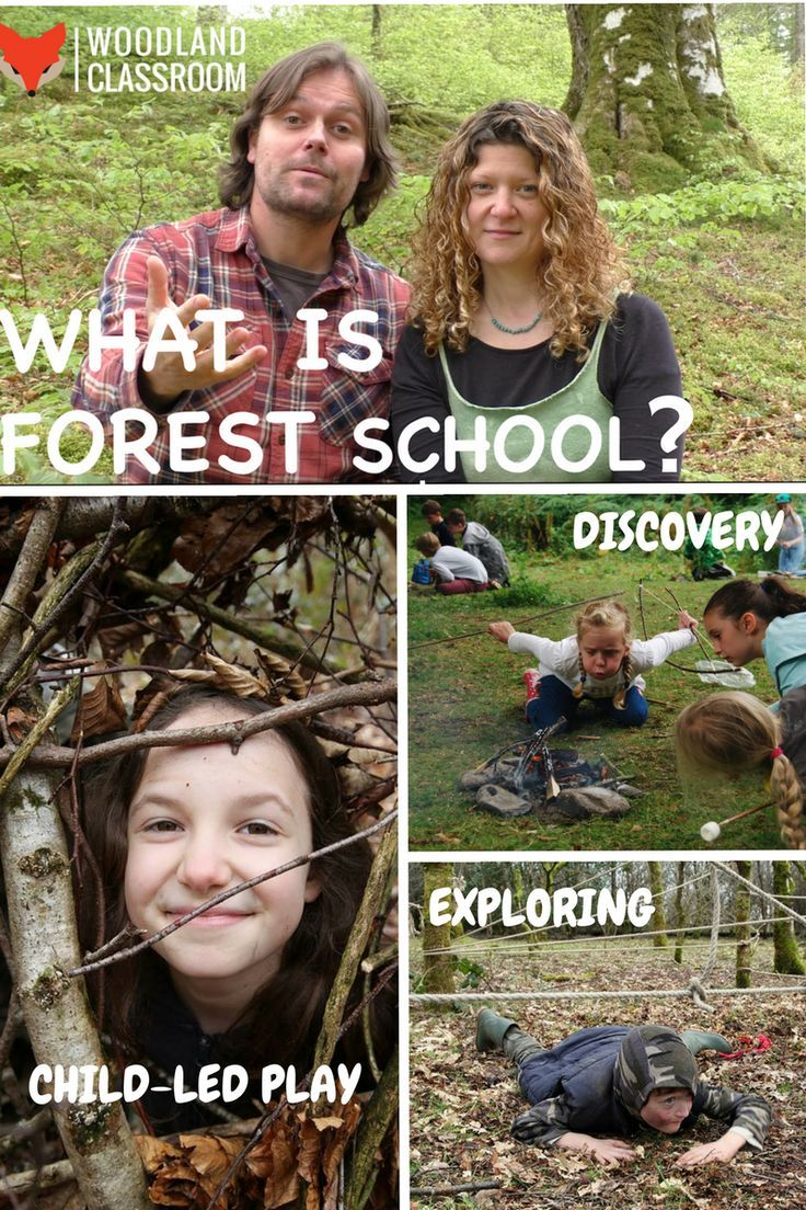 Video - What is Forest School? Follow the link and watch this video which explains all about Forest School, the social, emotional and physical benefits from the perspective of Forest School leaders and the children who attend. Outdoor education at it's best!