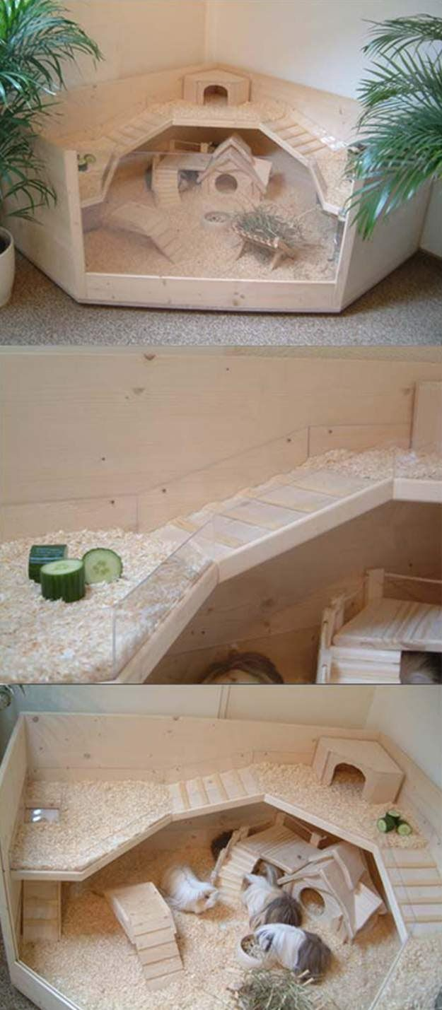 how to make a guinea pig house out of wood