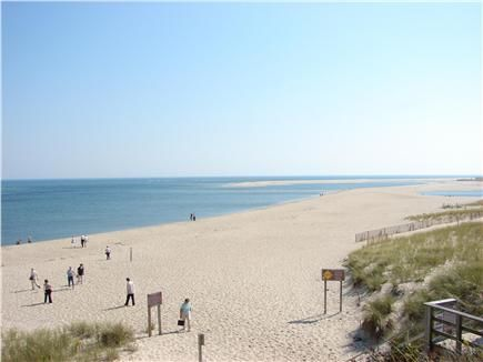 Many rentals near Lighthouse Beach, Chatham - walk for miles, search for seals