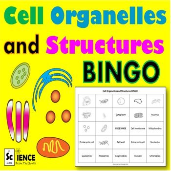 cell organelles and structures bingo review game science. Black Bedroom Furniture Sets. Home Design Ideas