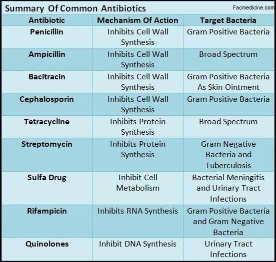 Antibiotics and What They Do....great chart to have for ...