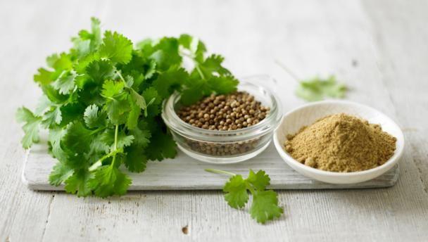 Fresh coriander | Herbs, Coriander, Coriander recipes