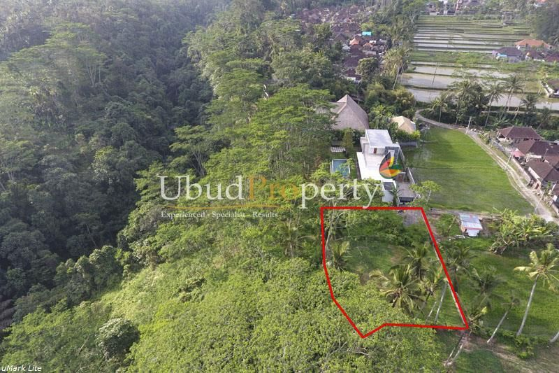 Land For Lease With A Marvelous Jungle And River View Near Ubud Land For Lease Ubud Land For Sale