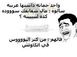 نكت فيسبوك محششين مصرية مضحكة شوارع زواج ثورة ساخرة كوميدية جديدة 2014 19 Thoughts Historical Figures Funny