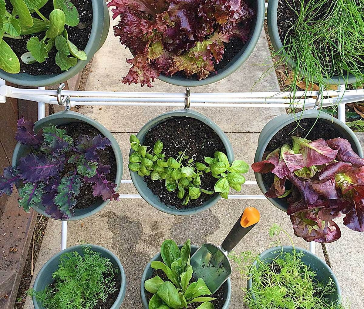 DIY Vertical Hanging Herb Garden Diy herb garden, Herb