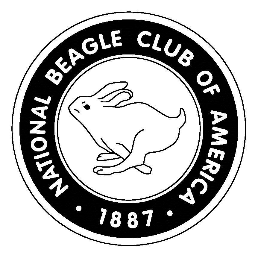 The National Beagle Club Of America Inc Home New Puppy Baby