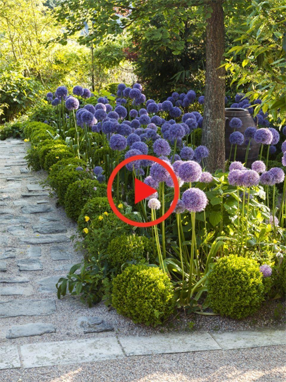 5 façons de planter ses bulbes à fleurs Bulbe fleur