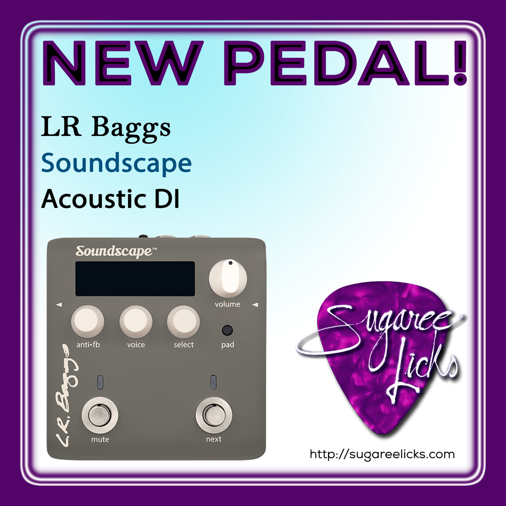 Where Are My Acoustic Guitarists With Amplifiers Lr Baggs Is The Leader In Pedal Manufacturing For Acoustic Player In 2020 Impulse Response Guitar Gear Effects Pedals