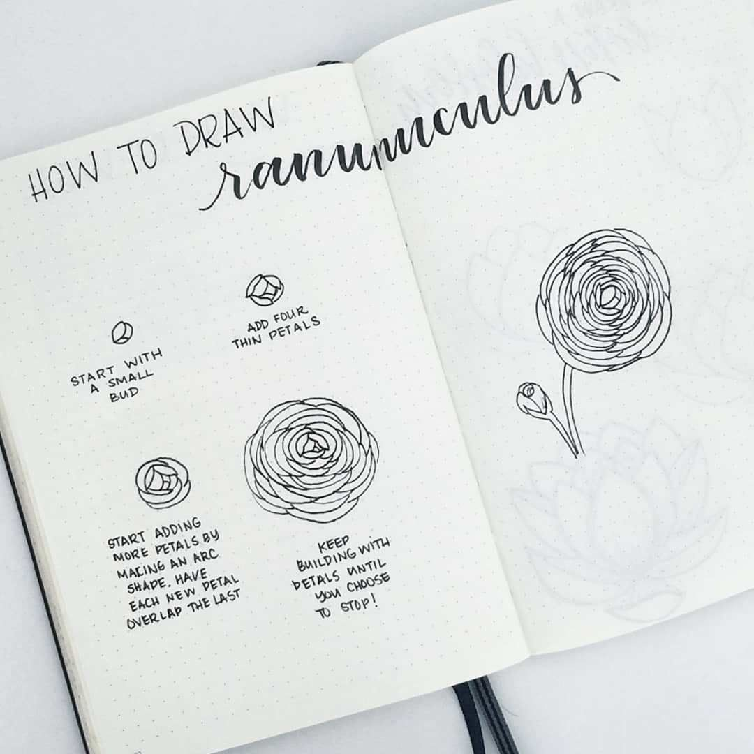 How to draw perfect flower doodles for bullet journal spreads