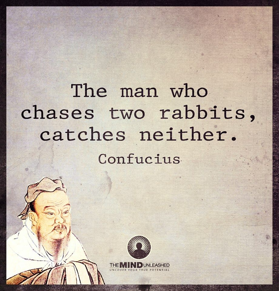 "Image result for ""The Person who chases two rabbits catches neither."""