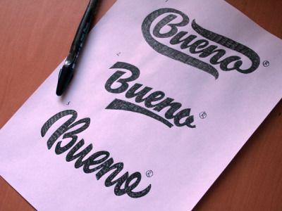 Beautiful script brush calligraphy fonts design shack