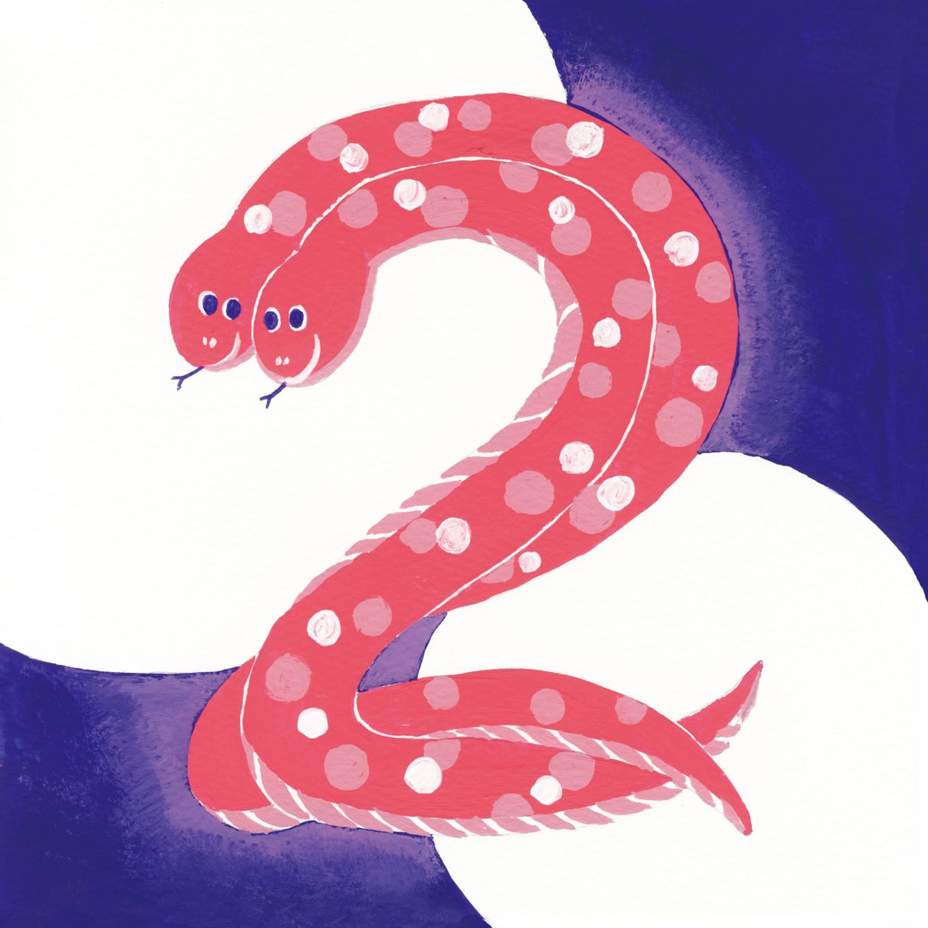 animal number 2