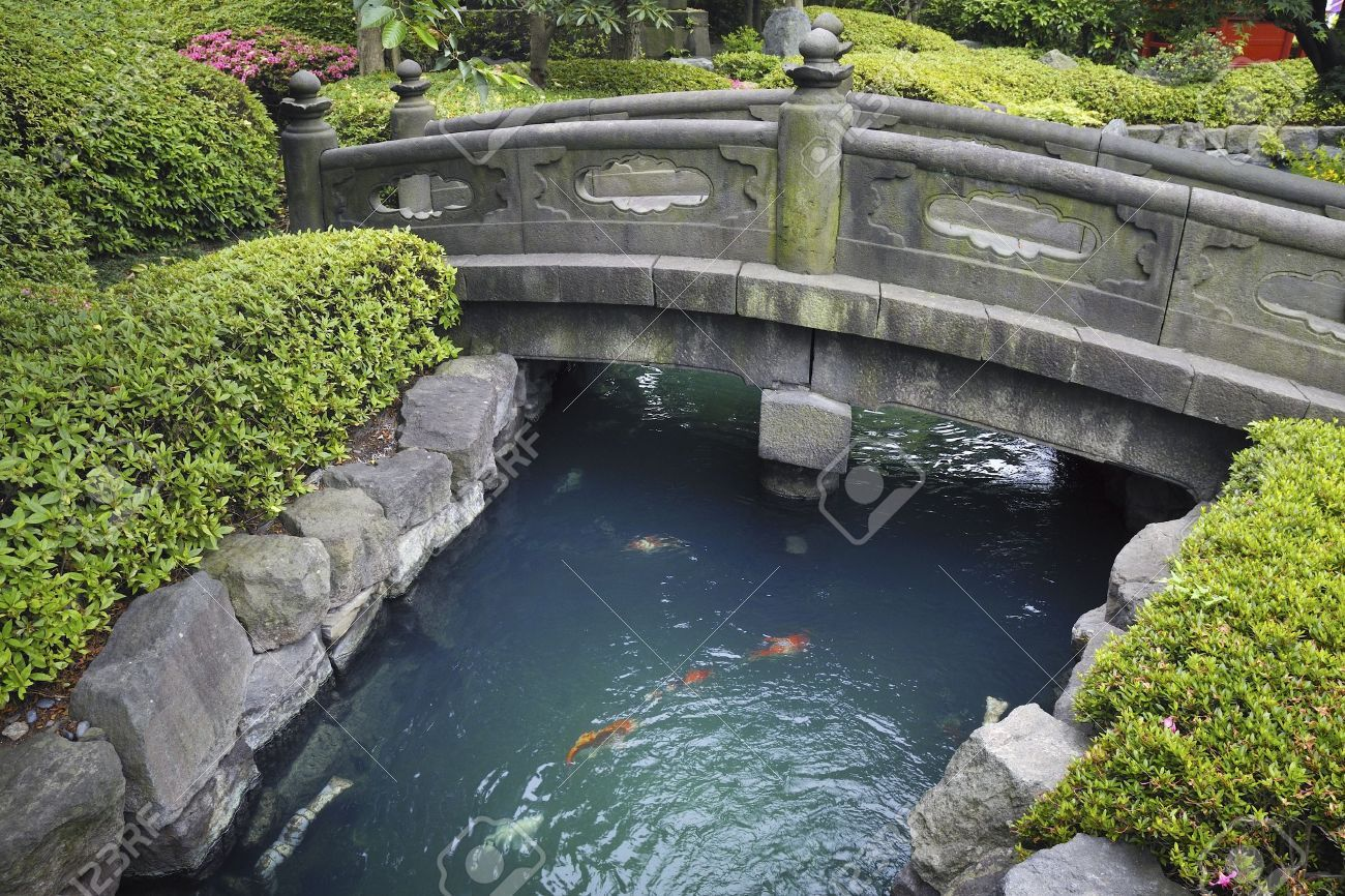 scenic stone bridge over blue water with red fishes in japanese