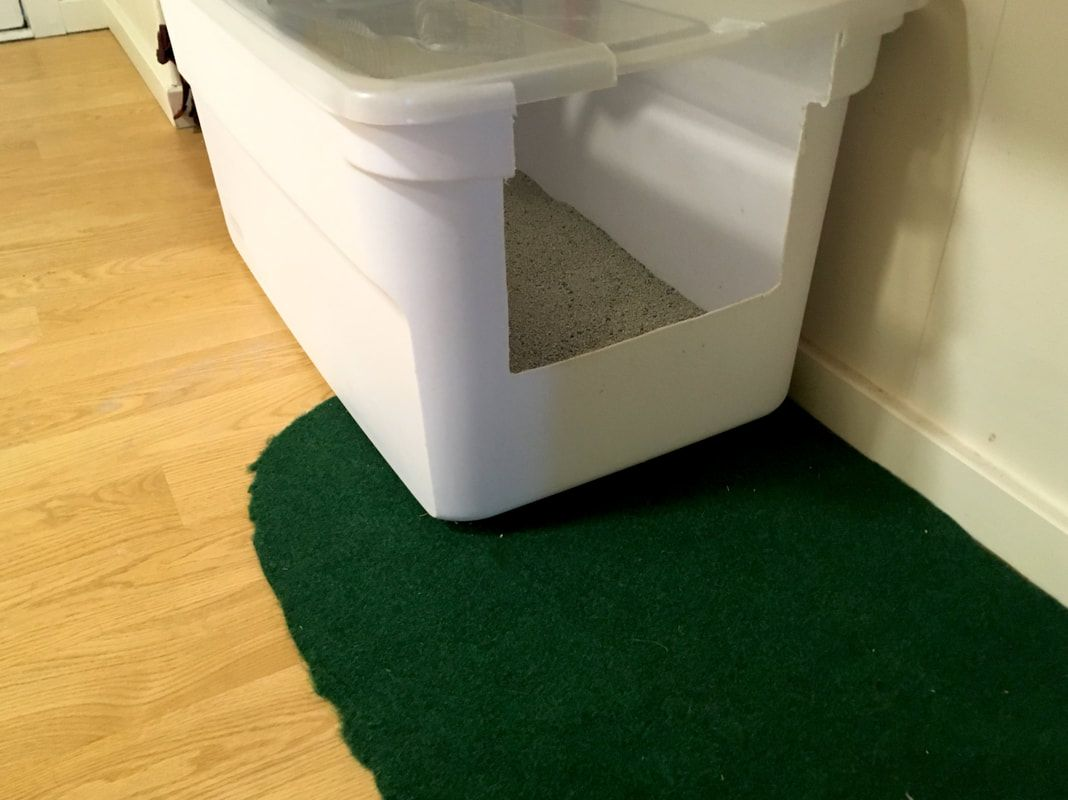 The Ultimate Litter Box A Guide To Making A Large Litter Box From Storage Totes Fixing Litter Box Problems And Keeping Cats Happy Storage Totes Litter Box Cat Litter