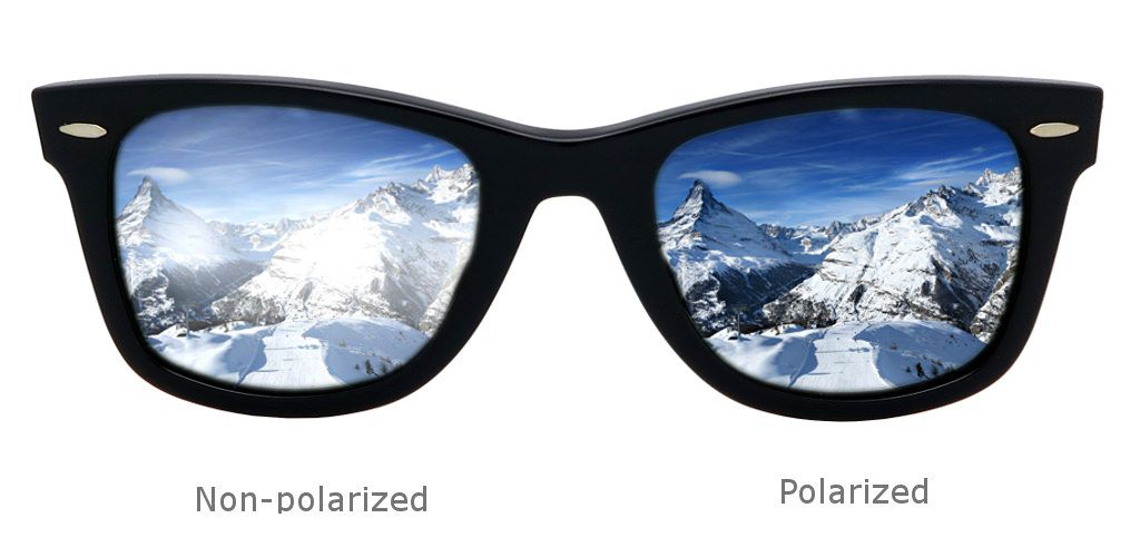 ray ban aviator polarized vs non