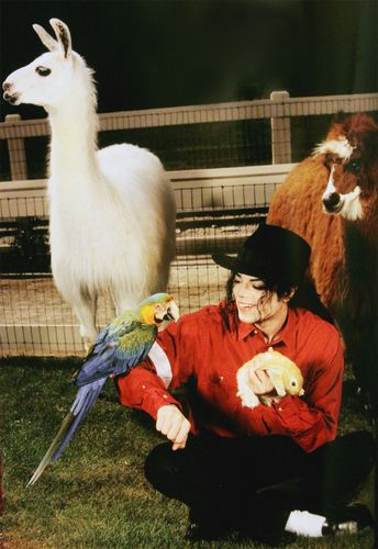 MJ with animals #michaeljackson