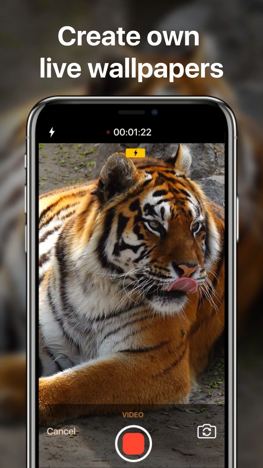 Impress friends and make your iPhone look inimitable! Make unique wallpapers out of your videos with Live Photo Maker!