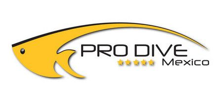 Pro Dive Mexico Offering 40 On Dive Holidays Diving Mexico Cave Diving